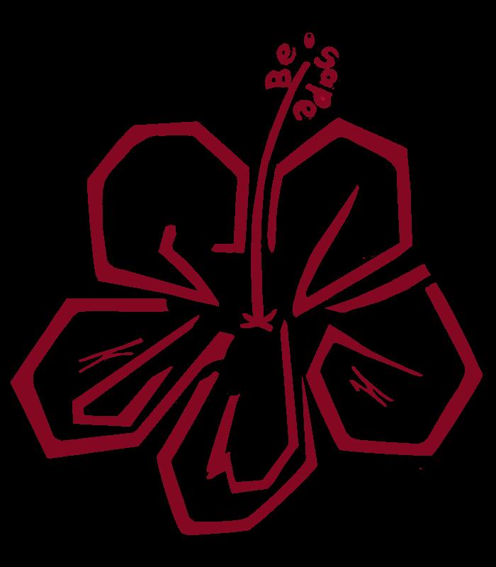 Be°sape Logo